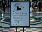 A Dance to Spring - Event Signage