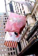Ace Banner - The Plaza Hotel - Eloise Anniversary